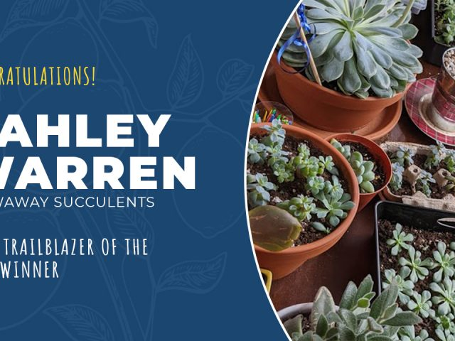 Youth Ventures Success Stories — Meet Cahley Warren